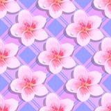 Seamless background tropical flowers plumeria Stock Photo