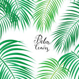 Seamless Background with Tropical Leaves Stock Images