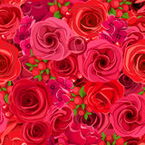 Seamless background with various red flowers. Vector illustration. Royalty Free Stock Photos