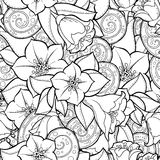 Seamless background in vector with doodles, flowers and paisley. Royalty Free Stock Photos