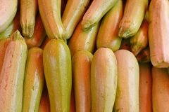 Seamless background from vegetables. Green fresh zucchini in the market royalty free stock photos