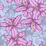 Seamless background with violet lilies. Royalty Free Stock Photography