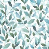 Seamless background with watercolor Branch and l. Floral pattern. Seamless background with watercolor Branch and leaves royalty free illustration