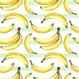 Seamless background of watercolor drawings of bananas and decorative stripes Stock Image