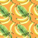 Seamless background of watercolor drawings of fruits yellow bananas and tropical banana green leaf Royalty Free Stock Photos