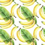 Seamless background of watercolor drawings of bananas and tropical banana green leaves Stock Images