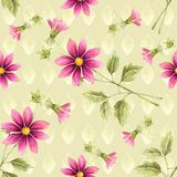 Seamless background of watercolor drawings of red flowers. On a beige background with a geometric element Stock Images
