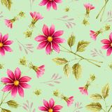 Seamless background of watercolor drawings of red flowers. On a turquoise background with leaves and branches Stock Photography