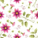 Seamless background of watercolor drawings of red flowers. On a white background with leaves and branches Royalty Free Stock Photo