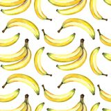 Seamless background of watercolor drawings of bananas Royalty Free Stock Images