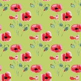 Seamless background with watercolor roses. Seamless pattern with watercolor flowers. Rose. Vector. Hand drawn Royalty Free Stock Photo