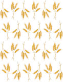 Seamless background with wheat ears Royalty Free Stock Images