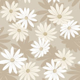 Seamless background with white and beige flowers. Royalty Free Stock Photos