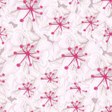 Seamless background with white flowers Stock Photography
