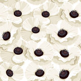 Seamless background with white poppies. Royalty Free Stock Images