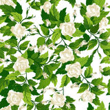 Seamless background with white roses Stock Photo