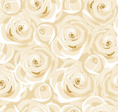 Seamless background with white roses and buds. Stock Images