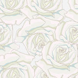 Seamless background. White roses. Stock Photo