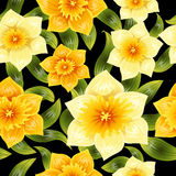 Seamless background with yellow daffodil narcissus. Spring flower with stem and leaves. Realistic pattern Stock Photos
