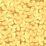 Seamless background with yellow flowers. Vector illustration. Stock Image