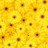 Seamless background with yellow gerbera flowers. Vector illustration. royalty free illustration