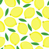 Seamless background with yellow lemons and green leaves. Cute vector lemon pattern. Summer fruit illustration on white background Royalty Free Stock Image