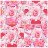 Seamless backgrounds with pink roses. A collection of 4 backgrounds with pink roses royalty free stock image