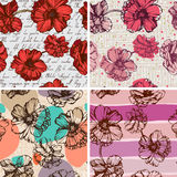 Seamless backgrounds with poppies Stock Images