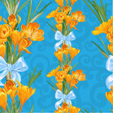 Seamless backround from spring yellow crocuses Stock Photo