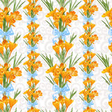 Seamless backround from yellow crocuses Stock Photography