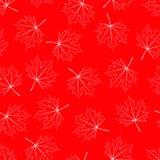 Seamless bakgrund för röd lönn Arkivbild