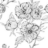Seamless bakgrund med blommor Arkivbilder