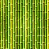 Seamless Bamboo Background. Stock Photo