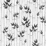 Seamless  bamboo pattern.  Black and white  illustration. Royalty Free Stock Photos