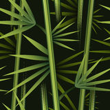 Seamless bamboo pattern. Floral seamless pattern with bamboo in the night jungles Royalty Free Stock Photo