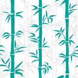 Seamless bamboo pattern. Tropical background. Stock Photos