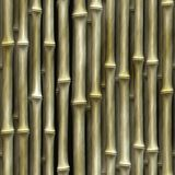 Seamless Bamboo Plant texture Stock Images