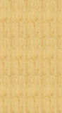 Seamless bamboo texture Royalty Free Stock Photos
