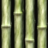 Seamless bamboo texture. Stock Images