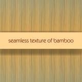 seamless bambu Royaltyfri Bild