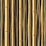 seamless bambuskog Royaltyfria Bilder