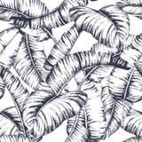 Seamless banana leaves pattern for fashion textile, black line plant vector illustration.  stock illustration