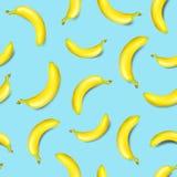 Seamless banana pattern on light blue background. Vector illustration Stock Photo