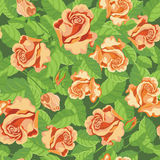 Seamless beatifull roses Royalty Free Stock Photo
