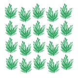 Seamless beauty floral patterns on green background Royalty Free Stock Photography