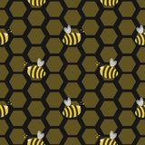 Seamless bee hive Stock Images