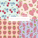 Seamless berries pattern set. Royalty Free Stock Images