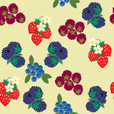 Seamless berry pattern. Stock Photography