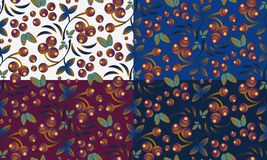 Seamless berry patterns with bunch of rowan Stock Images