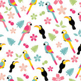 Seamless bird pattern. Seamless pattern with plumeria, macaw, toucan, tropical leaves and flowers Stock Images